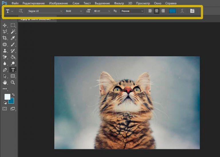 Онлайн редактор надписей на картинках