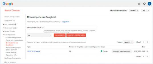 Как быстро и точно проверить индексацию сайта онлайн