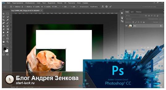 Уменьшить объект в Photoshop